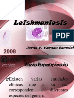 13.Leishmaniosis