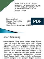 2011-praktikum_mandiri