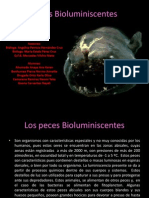 Peces Bioluminiscentes