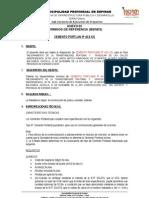 anexo 02 TÉRMINOS DE REFERENCIA - cemento ok