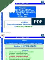 1.4 Problemas Ambientales Globales (20022004)