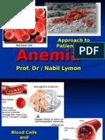 Anemia.mansfans.com