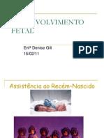 Desenvolvimento Fetal 1502