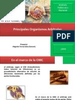 Principales Organismos Arbitrales