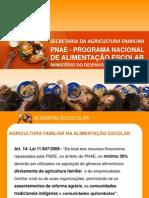 Apresentação_PNAE_Geral