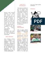 grupo_sociologíacolombiana-313