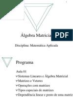 algebra matricial matemática aplicada