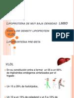 Lipoproteína de muy baja densidad  LMBD
