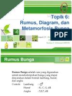 Rumus- Diagram Dan Metamorfosis Bunga