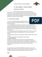 SEGURIDAD  HIGIENE  Y  MEDIO  AMBIENTE  Y  CONTROL DE PÉRDIDAS.docx