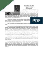 Paper Antropologi