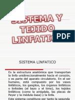 Sistema Linfoide