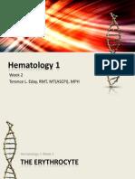 Hematology 1