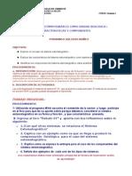 Sistema estomatognatico-FernandoSalcedo