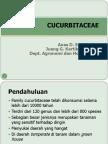 kuliah cucurbitaceae