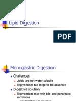 02 Digestion of Lipids