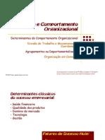 Aula4EstruturaeComporamentoOrganizacional
