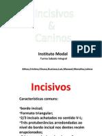 aula-2-incisivos-e-caninos.pdf