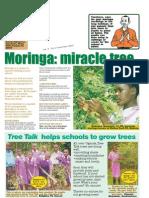 Tree Talk, November 2003