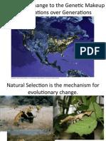 Evolution Lecture F'12