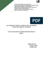Trabajo Violencia Genero Igualdad Genero Carlos Armas Joel Castillo