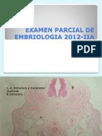 Parcial de Embriologia I