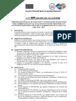 27feb Directiva Contrato AIP 2013