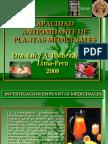 Antioxidantes2008 Dra Ibanez 121120081841 Phpapp02