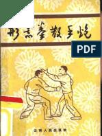 123631261 Xing Yi Quan San Shou Gun