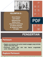 (Kelompok 6) Repair Perineum - Format Ppt 2010