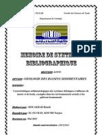 Memoire de Synthese Bibliographique 2