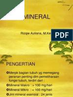 Ppt Ilmu Gizi-mineral