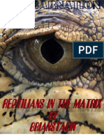 Reptilians in the Matrix