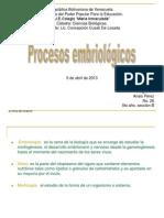 Procesos embriológicos