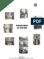 Apuntes Primeros Auxilios 2010 TAFAD_0.pdf