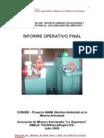 Informe Final Tulin[1]RetortaComunal