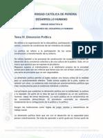 Tema 6 Dimension Politica 2013-1