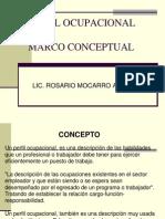 Perfil Ocupacional Marco Conceptual