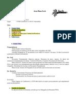 ActaPlenoFech 10.5.2013