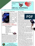 Spacehopper Fact Sheet No 22