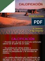 CALCIFICACIÓN
