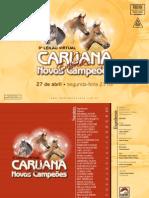 caruana_embrio_baixa
