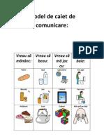 Model de Caiet de Comunicare