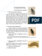 FAQ-Pest and Diseases