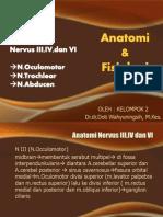 anatomi dan fisiologi n III, IV, VI