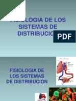 Fisio Clase 4 Circulatorio