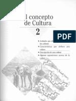 Ember y Ember_ElConceptoDeCultura