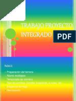 Trabajo Proyecto Integrado