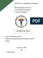 Informe de Orina Laboratorio