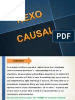 Nexo Causal en La Responsabilidad Civil. Diapositivas